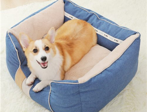 Warm autumn and winter bed samll dog bed